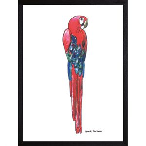 Catchii poster wit red macaw