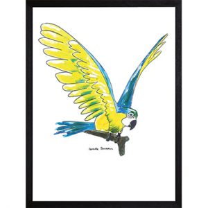 Catchii poster wit blue parrot