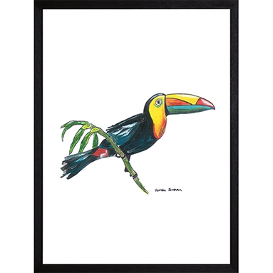 Catchii poster wit Toucan