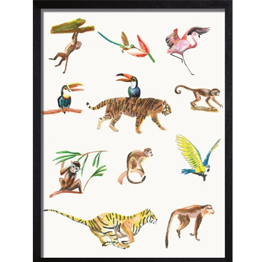 Poster wit Colorful wildlife