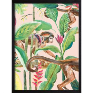 poster roze monkey