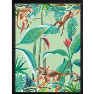 Catchii poster Monkey Jungle Stories